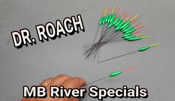 DR Roach