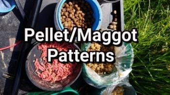 HT PELLET/MAGGOT