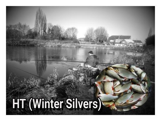 HT WINTER SILVERS